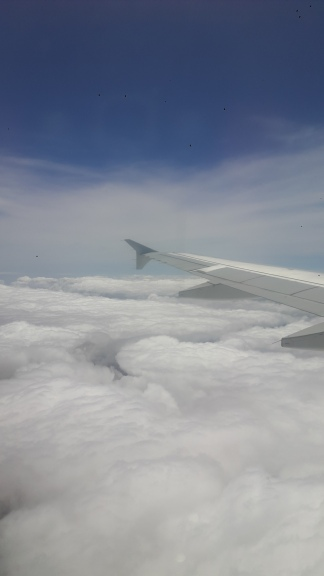 wing above clouds